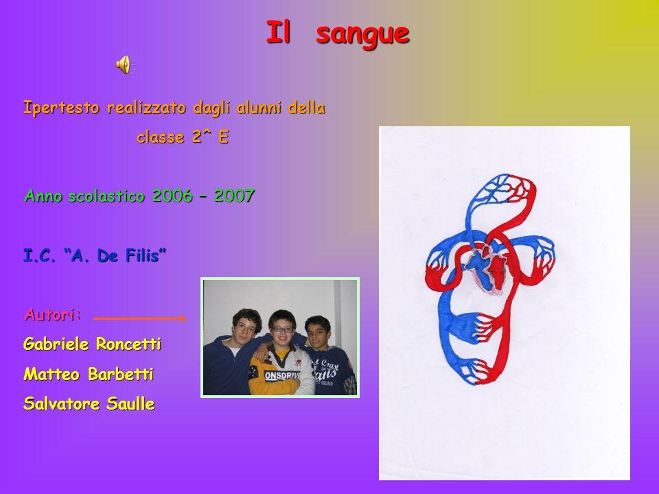 Il sangue Ipertesto realizzato dagli alunni della classe 2^ E Anno scolastico 2006 – 2007 I.C. A. De Filis Autori: Gabriele Roncetti Matteo Barbetti S