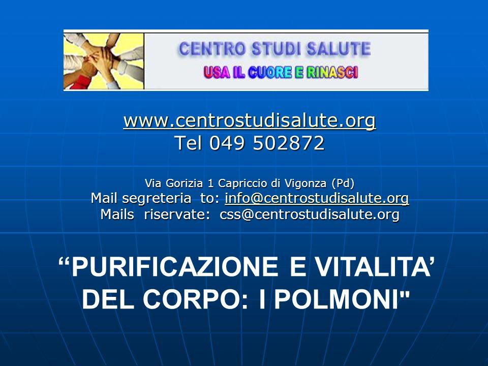 www.centrostudisalute.org Tel 049 502872 Via Gorizia 1 Capriccio di Vigonza (Pd) Mail segreteria to: info@centrostudisalute.org info@centrostudisalute.org Mails riservate: css@centrostudisalute.org PURIFICAZIONE E VITALITA DEL CORPO: I POLMONI