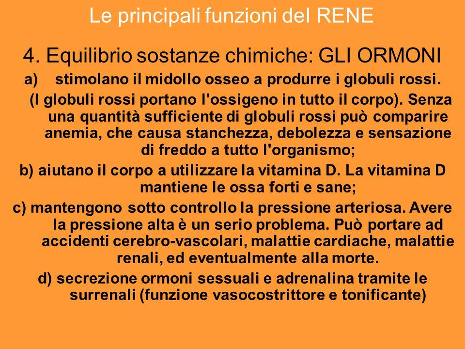 Le principali funzioni deI RENE 4.