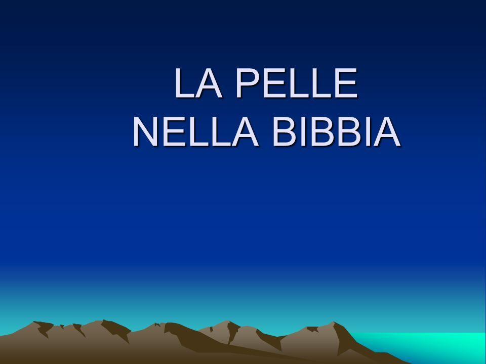 LA PELLE NELLA BIBBIA