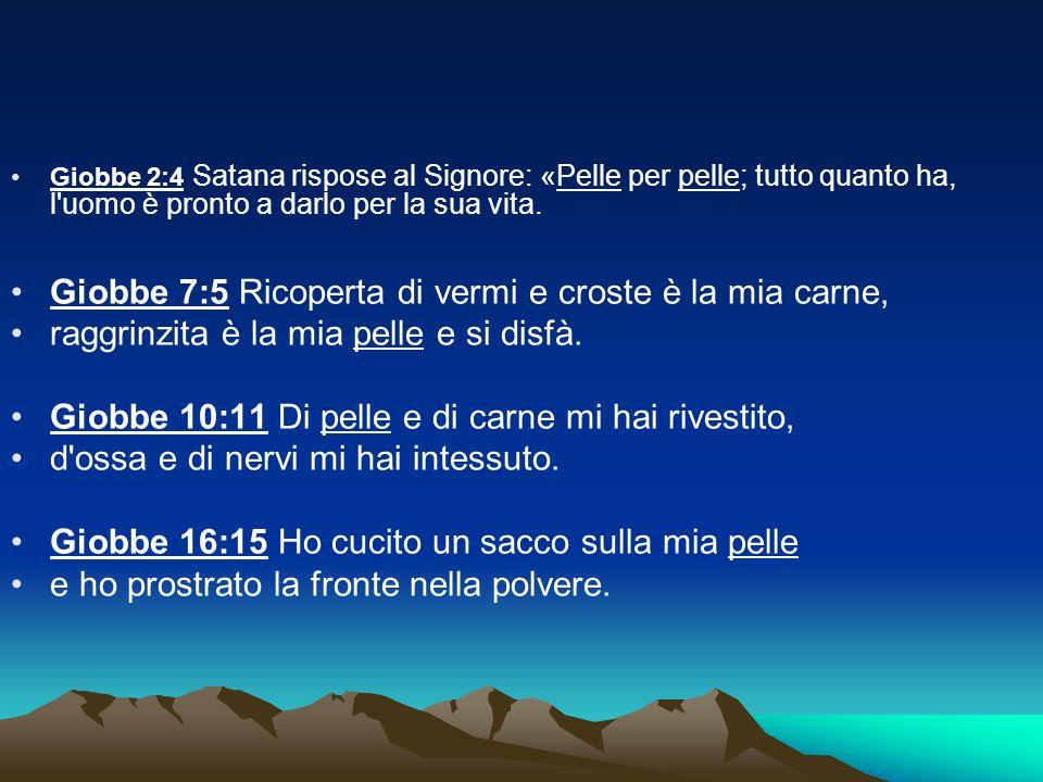 Giobbe 2:4 Satana rispose al Signore: «Pelle per pelle; tutto quanto ha, l'uomo è pronto a darlo per la sua vita. Giobbe 7:5 Ricoperta di vermi e cros