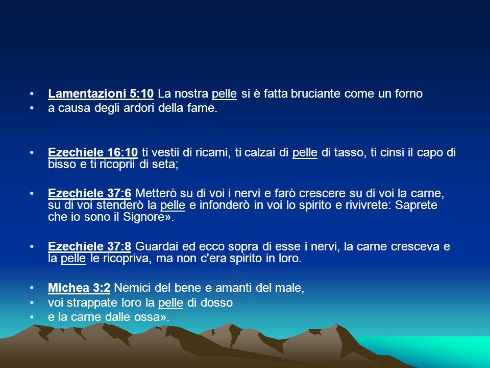 Lamentazioni 5:10 La nostra pelle si è fatta bruciante come un forno a causa degli ardori della fame. Ezechiele 16:10 ti vestii di ricami, ti calzai d