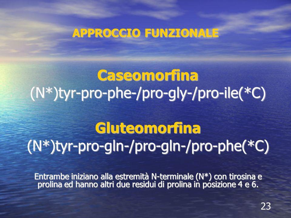 APPROCCIO FUNZIONALE Caseomorfina(N*)tyr-pro-phe-/pro-gly-/pro-ile(*C)Gluteomorfina(N*)tyr-pro-gln-/pro-gln-/pro-phe(*C) Entrambe iniziano alla estremità N-terminale (N*) con tirosina e prolina ed hanno altri due residui di prolina in posizione 4 e 6.