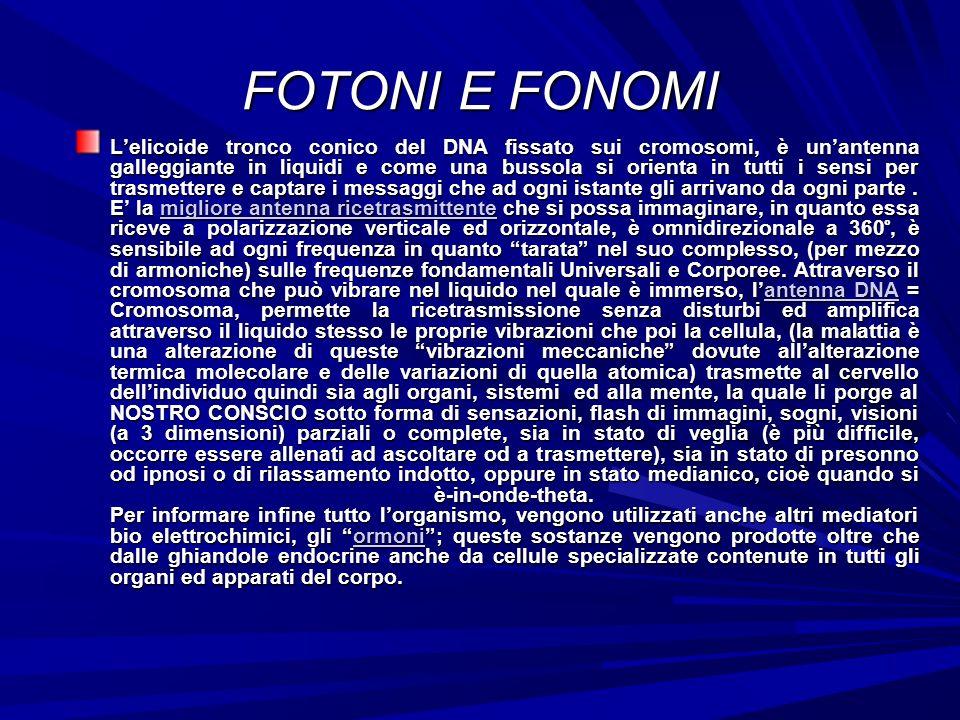 FOTONI E FONOMI Lelicoide tronco conico del DNA fissato sui cromosomi, è unantenna galleggiante in liquidi e come una bussola si orienta in tutti i sensi per trasmettere e captare i messaggi che ad ogni istante gli arrivano da ogni parte.