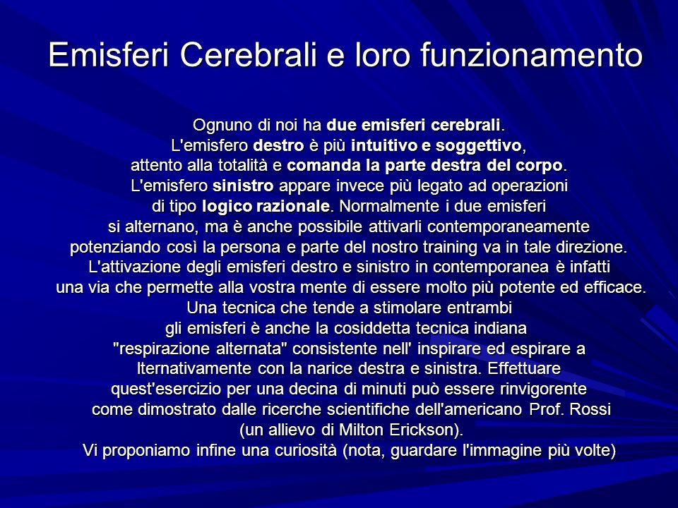 Ognuno di noi ha due emisferi cerebrali.