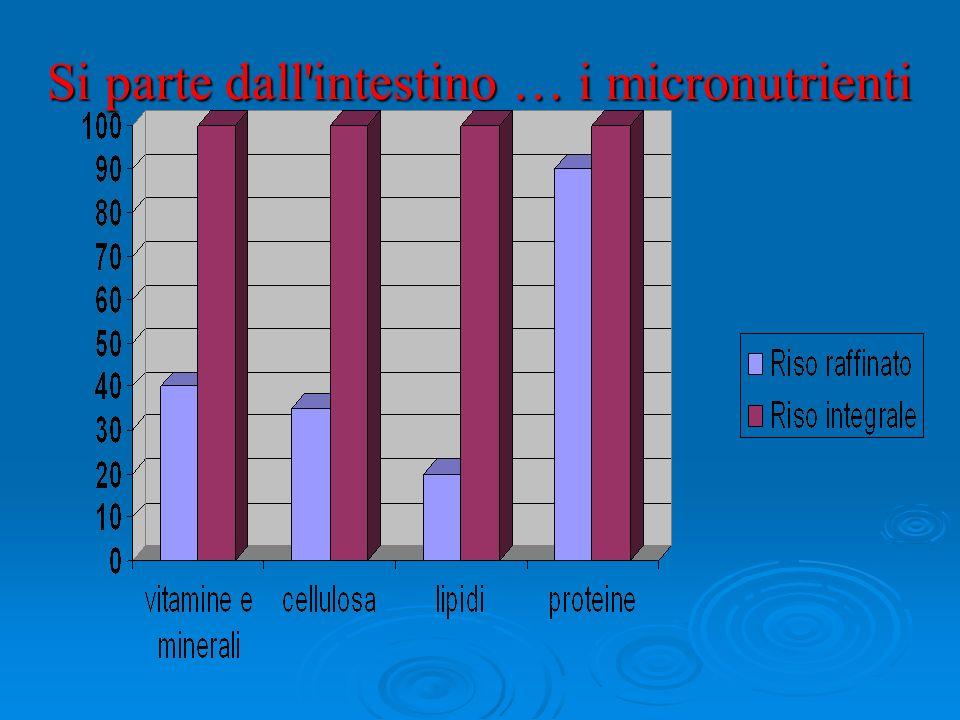 Si parte dall intestino … i micronutrienti