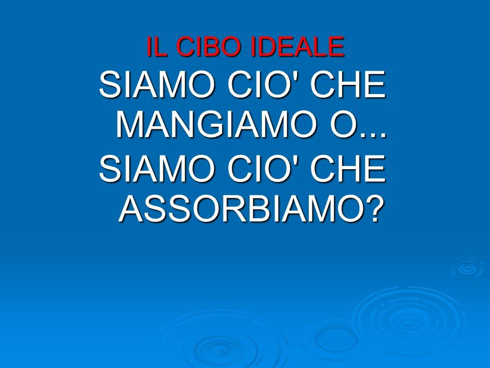IL CIBO IDEALE SIAMO CIO' CHE MANGIAMO O... SIAMO CIO' CHE ASSORBIAMO?