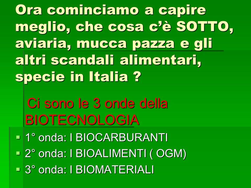 Ora cominciamo a capire meglio, che cosa cè SOTTO, aviaria, mucca pazza e gli altri scandali alimentari, specie in Italia ? Ci sono le 3 onde della BI