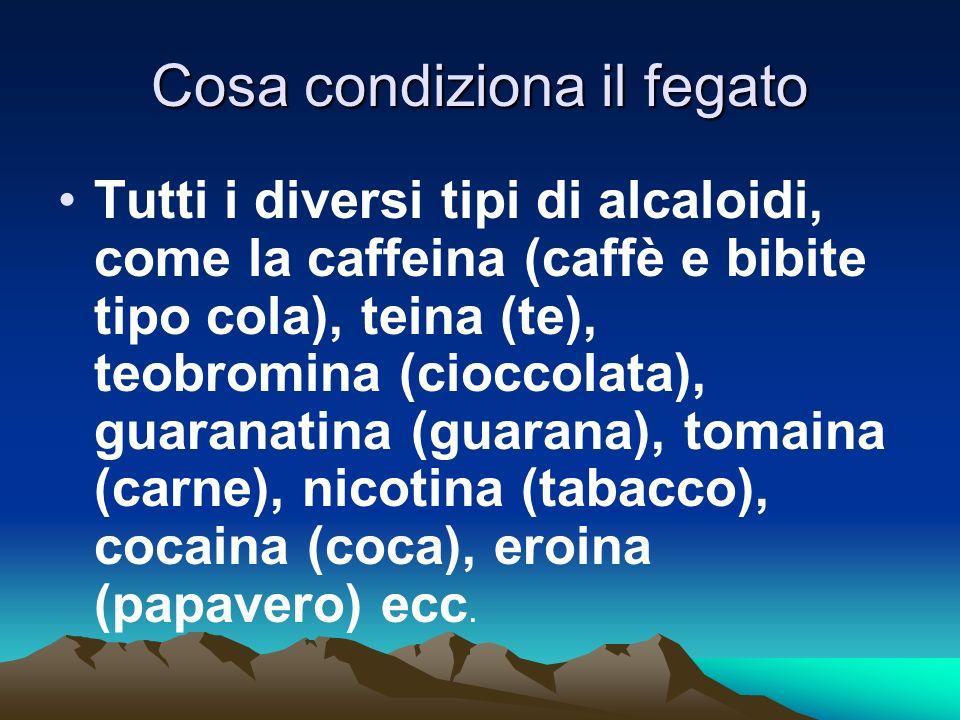 Cosa condiziona il fegato Tutti i diversi tipi di alcaloidi, come la caffeina (caffè e bibite tipo cola), teina (te), teobromina (cioccolata), guarana