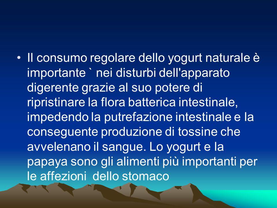 Il consumo regolare dello yogurt naturale è importante ` nei disturbi dell'apparato digerente grazie al suo potere di ripristinare la flora batterica