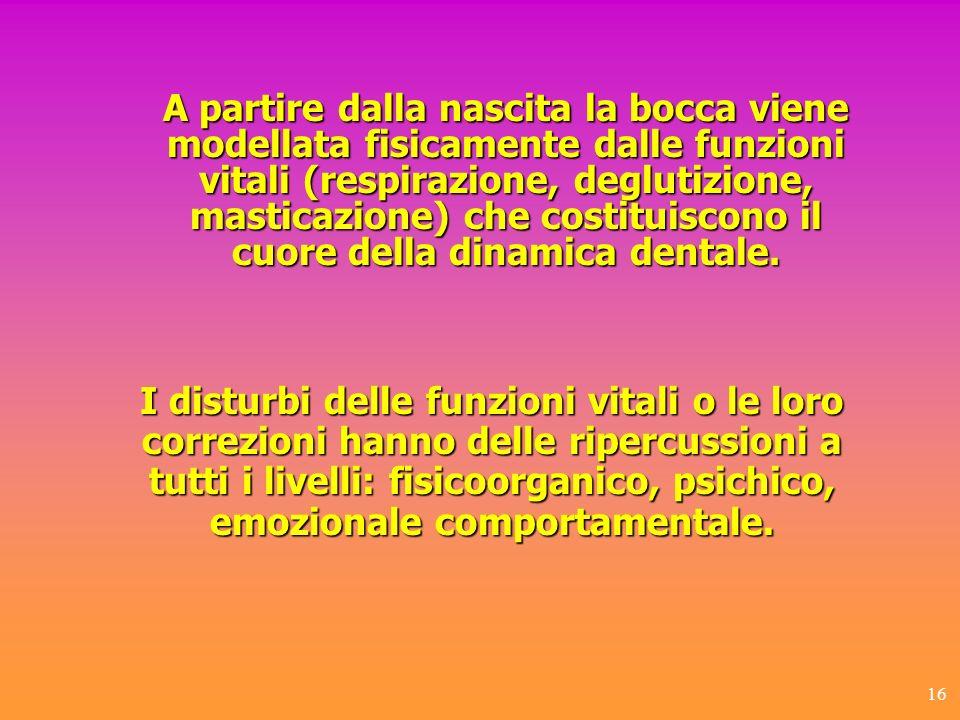 16 A partire dalla nascita la bocca viene modellata fisicamente dalle funzioni vitali (respirazione, deglutizione, masticazione) che costituiscono il