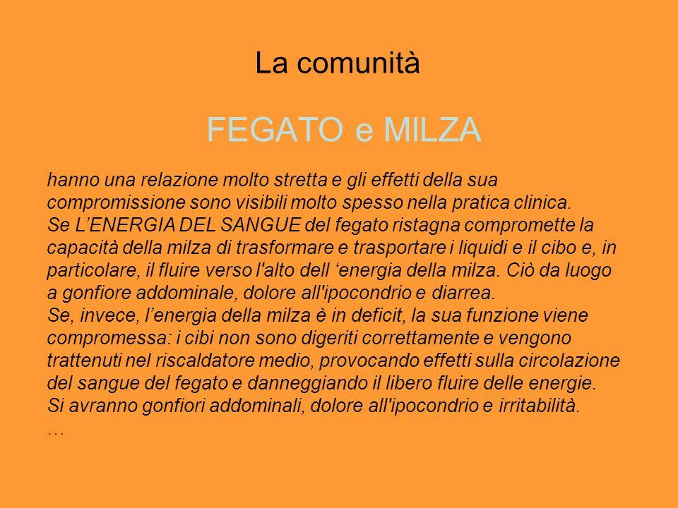 La comunità FEGATO e MILZA hanno una relazione molto stretta e gli effetti della sua compromissione sono visibili molto spesso nella pratica clinica.