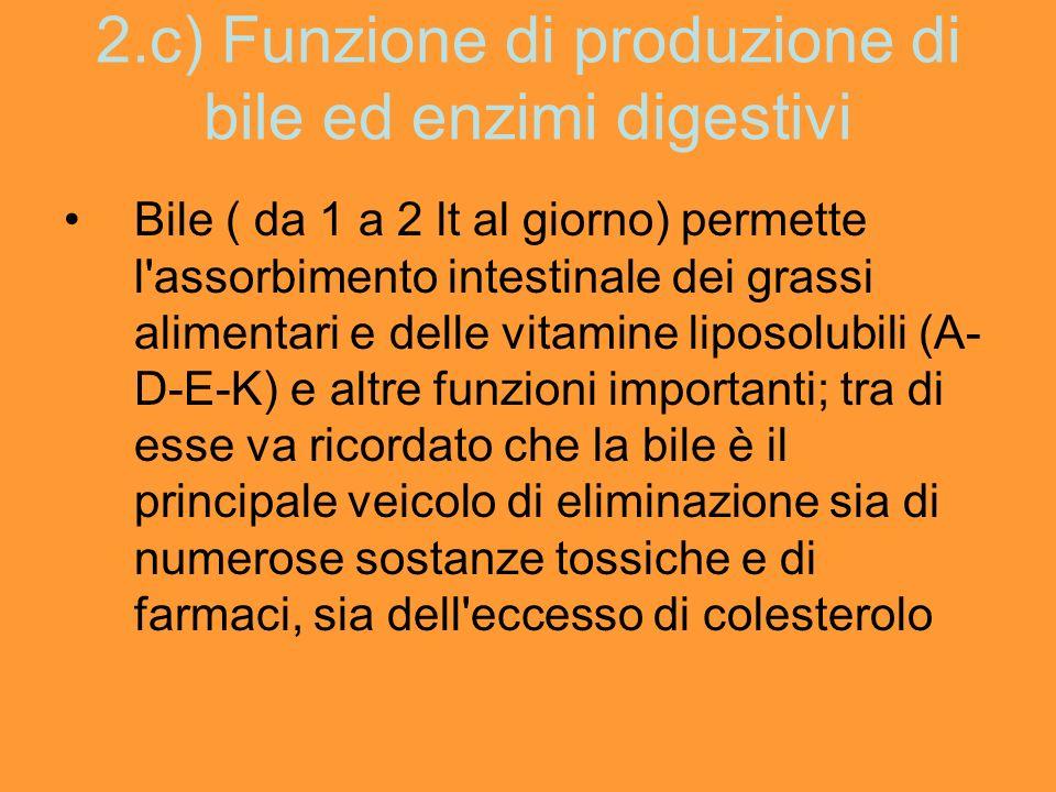 2.c) Funzione di produzione di bile ed enzimi digestivi Bile ( da 1 a 2 lt al giorno) permette l'assorbimento intestinale dei grassi alimentari e dell