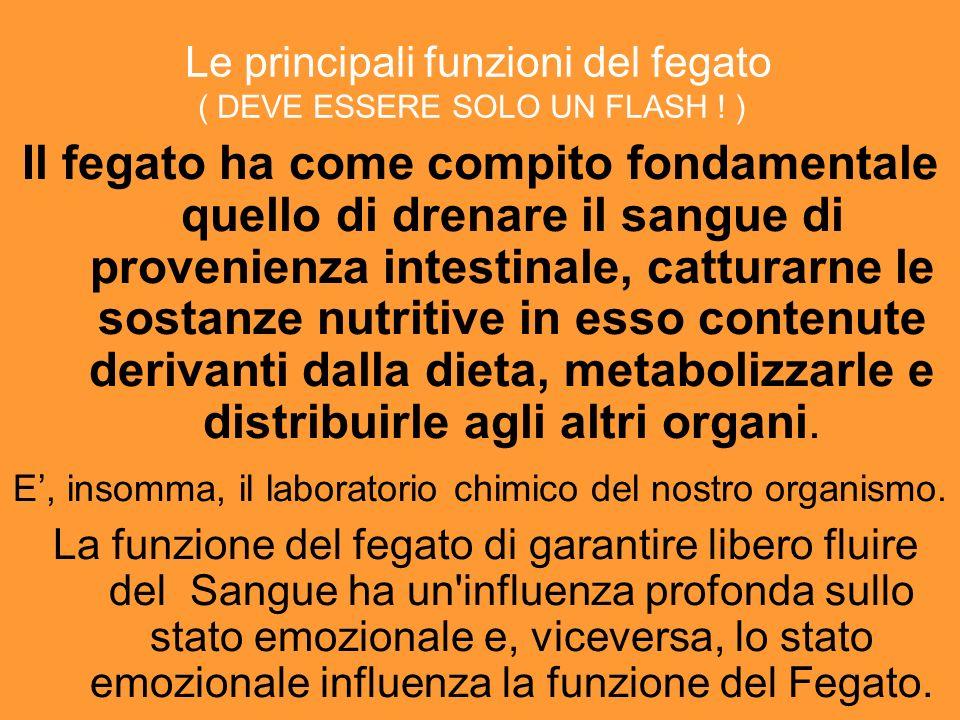 PURIFICAZIONE: oltre la via fisica IL FEGATO = KAVED GHIANDOLA DIGESTIVA ORGANO DI SECREZIONE : MODIFICAZIONE DI FARMACI, NEUTRALIZZAZIONE DI PRODOTTI TOSSICI ( derivati ammoniaca e degradazione proteica ) … ONORE PESO GLORIA LUCE FRUTTO: LA REALIZZAZIONE