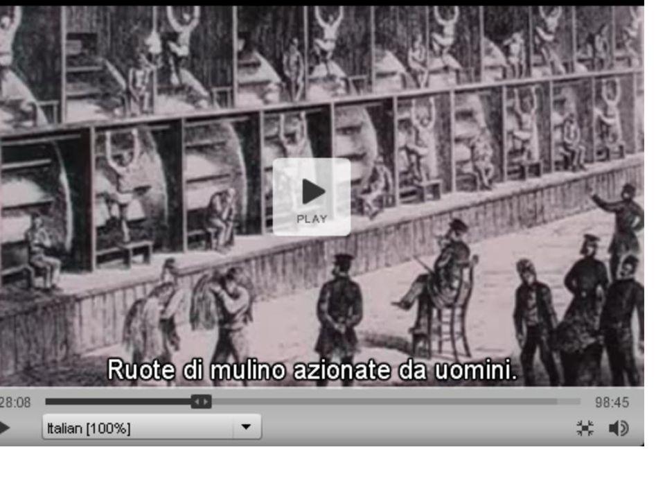 IL REDDITO DI CITTADINANZA c