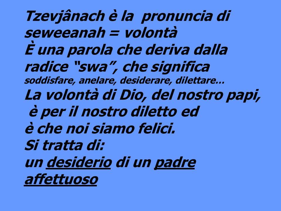 Tzevjânach è la pronuncia di seweeanah = volontà È una parola che deriva dalla radice swa, che significa soddisfare, anelare, desiderare, dilettare… L