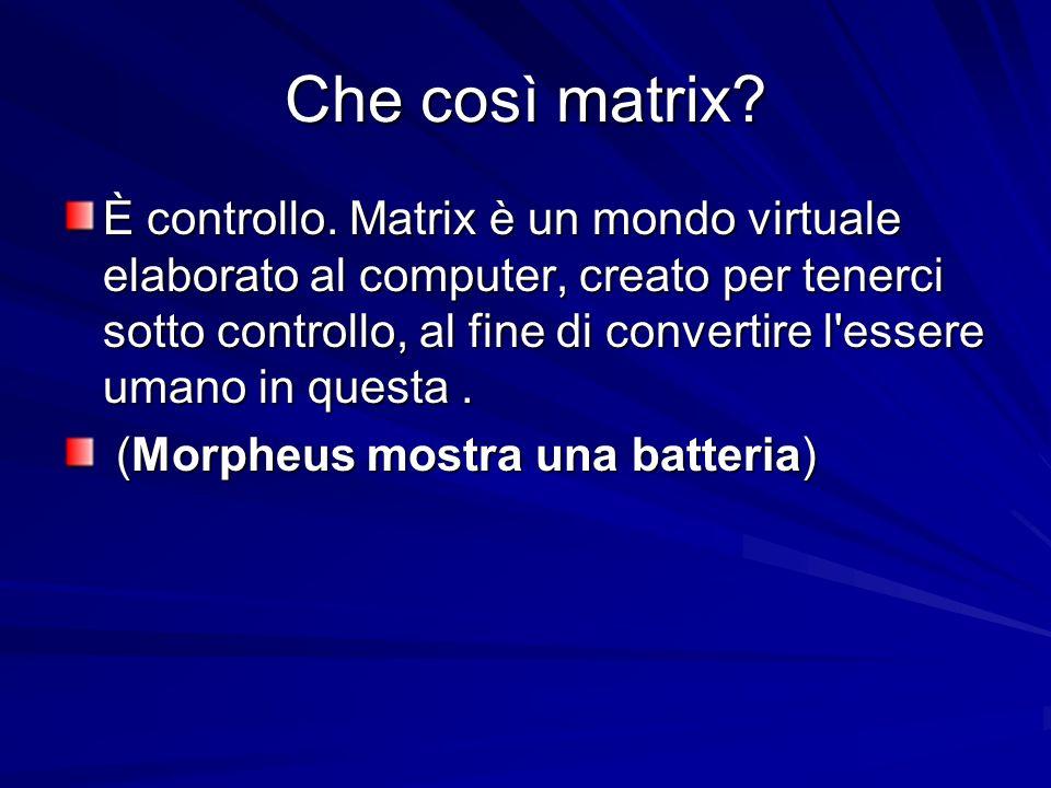Che così matrix? È controllo. Matrix è un mondo virtuale elaborato al computer, creato per tenerci sotto controllo, al fine di convertire l'essere uma