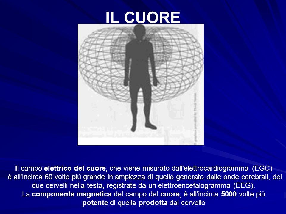 IL CUORE Il campo elettrico del cuore, che viene misurato dallelettrocardiogramma (EGC) è all'incirca 60 volte più grande in ampiezza di quello genera