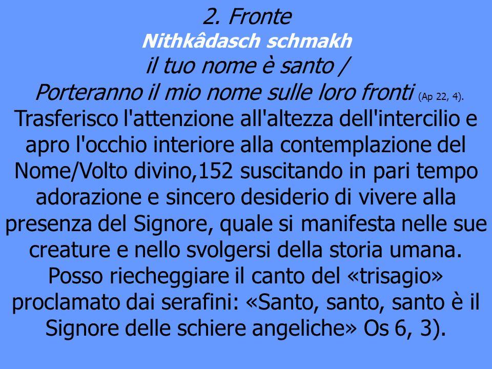 2. Fronte Nithkâdasch schmakh il tuo nome è santo / Porteranno il mio nome sulle loro fronti (Ap 22, 4). Trasferisco l'attenzione all'altezza dell'int