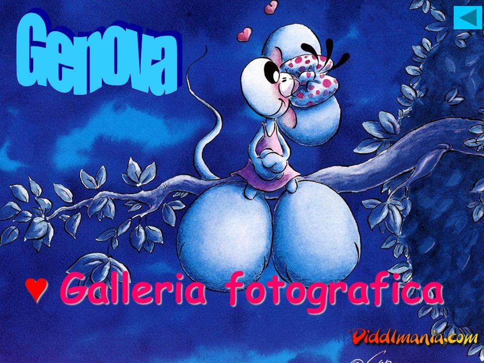 G Galleria fotografica