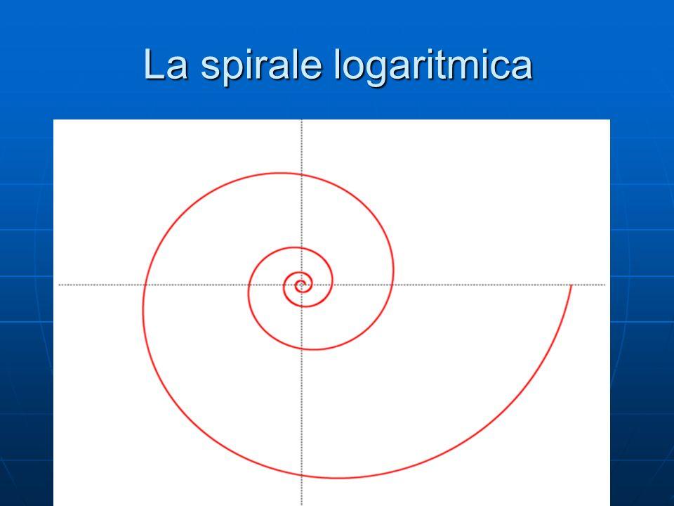 La spirale logaritmica