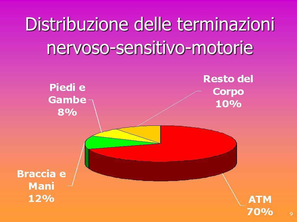 9 Distribuzione delle terminazioni nervoso-sensitivo-motorie