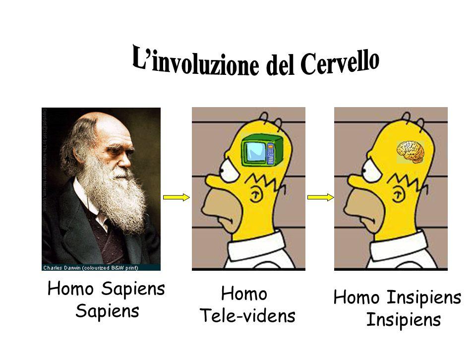 Homo Sapiens Sapiens Homo Tele-videns Homo Insipiens Insipiens