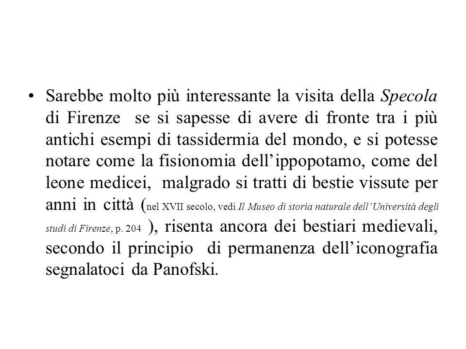 Sarebbe molto più interessante la visita della Specola di Firenze se si sapesse di avere di fronte tra i più antichi esempi di tassidermia del mondo,