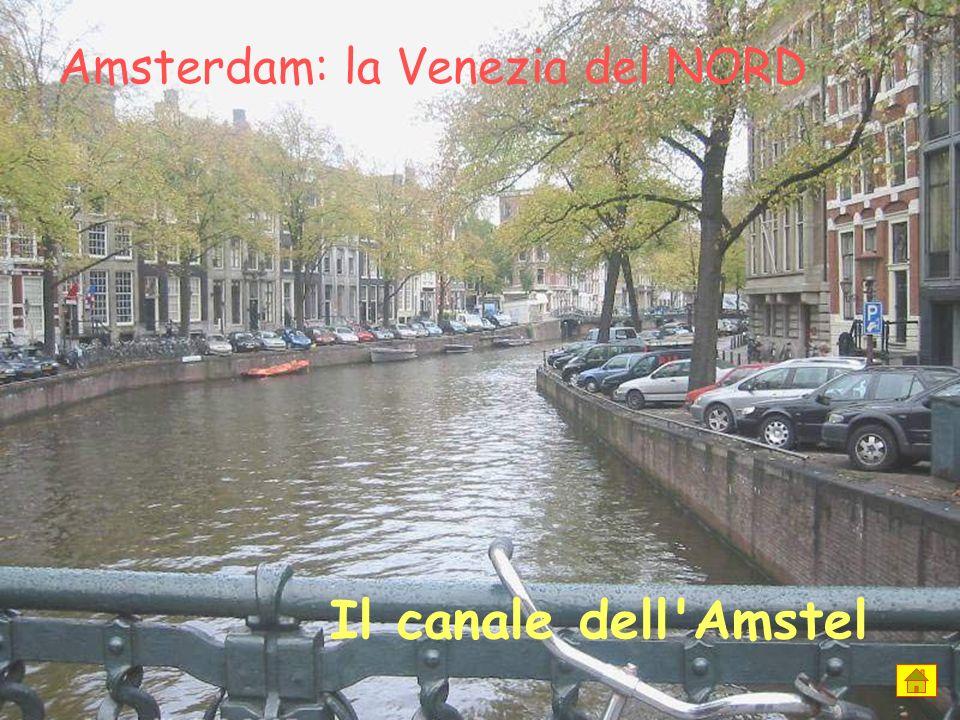 Il canale dell Amstel Amsterdam: la Venezia del NORD