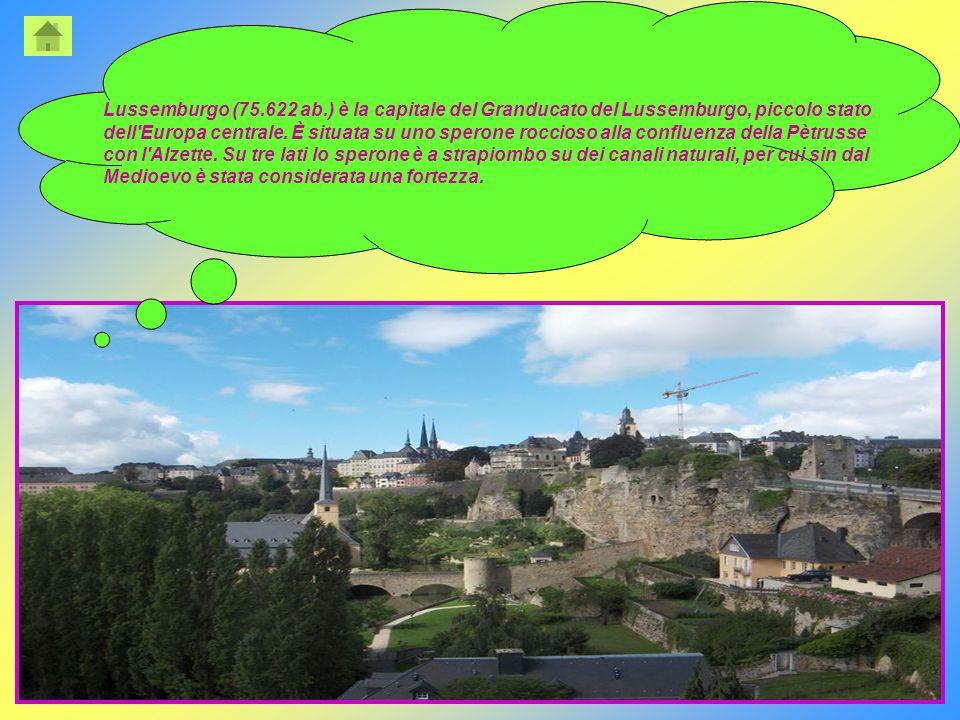 Lussemburgo (75.622 ab.) è la capitale del Granducato del Lussemburgo, piccolo stato dell'Europa centrale. È situata su uno sperone roccioso alla conf