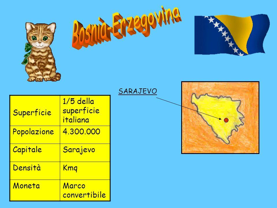 Superficie 1/5 della superficie italiana Popolazione4.300.000 CapitaleSarajevo DensitàKmq MonetaMarco convertibile SARAJEVO