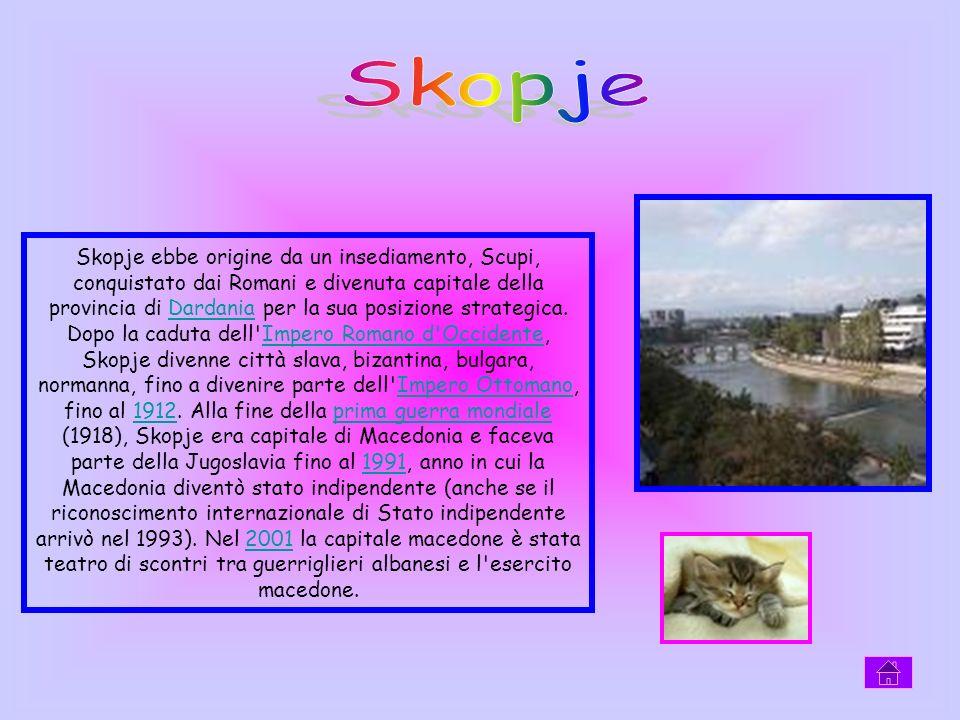 Skopje ebbe origine da un insediamento, Scupi, conquistato dai Romani e divenuta capitale della provincia di Dardania per la sua posizione strategica.