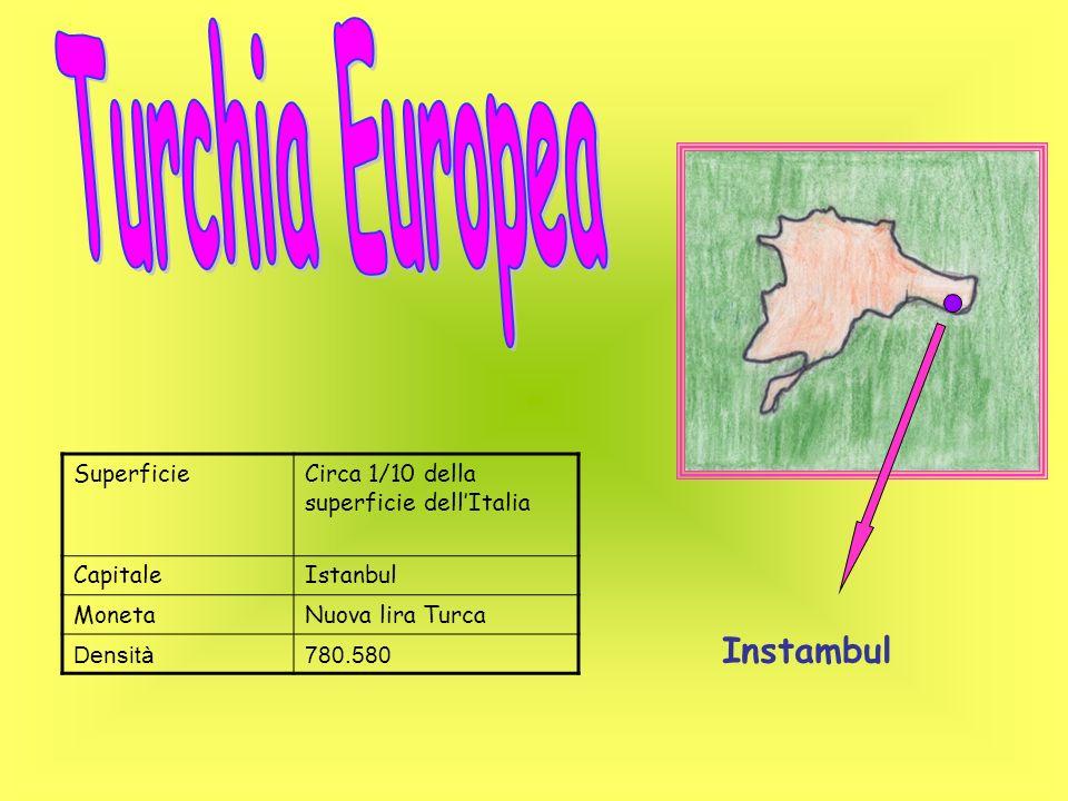SuperficieCirca 1/10 della superficie dellItalia CapitaleIstanbul MonetaNuova lira Turca Densità780.580 Instambul