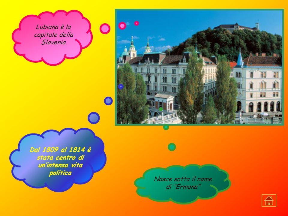 Lussemburgo (75.622 ab.) è la capitale del Granducato del Lussemburgo, piccolo stato dell Europa centrale.