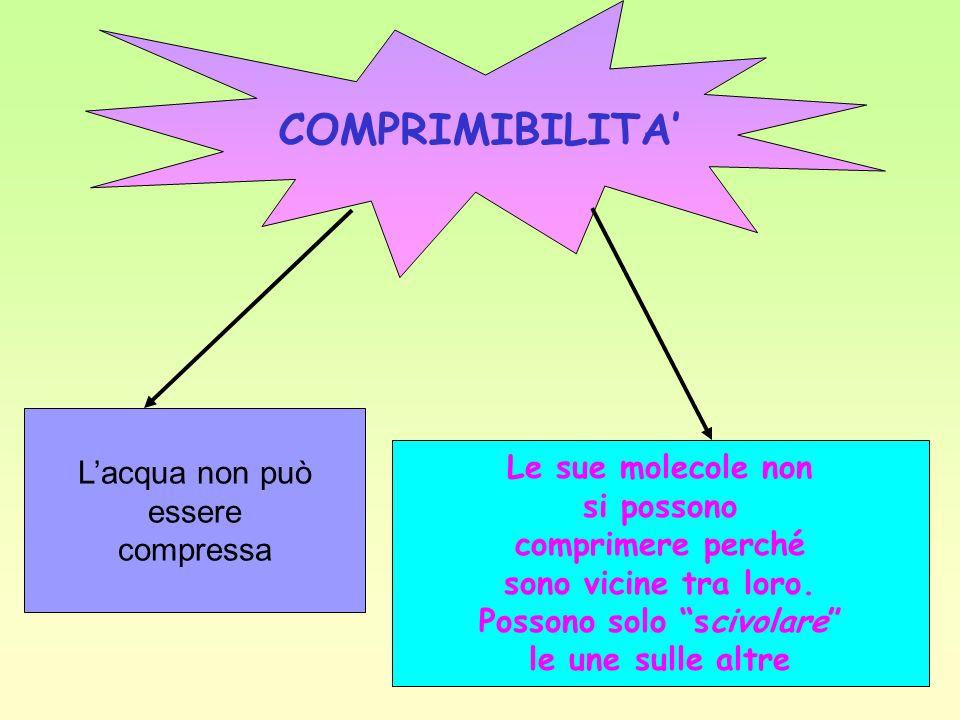 COMPRIMIBILITA Lacqua non può essere compressa Le sue molecole non si possono comprimere perché sono vicine tra loro.