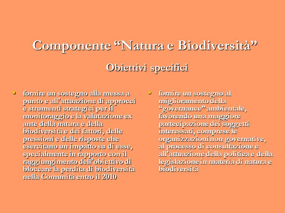 Componente Natura e Biodiversità Obiettivi specifici fornire un sostegno alla messa a punto e all'attuazione di approcci e strumenti strategici per il
