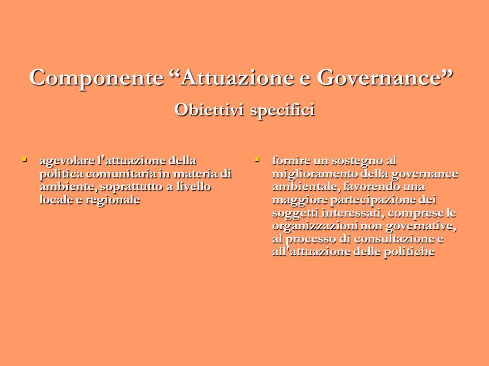 Componente Attuazione e Governance Obiettivi specifici agevolare l'attuazione della politica comunitaria in materia di ambiente, soprattutto a livello