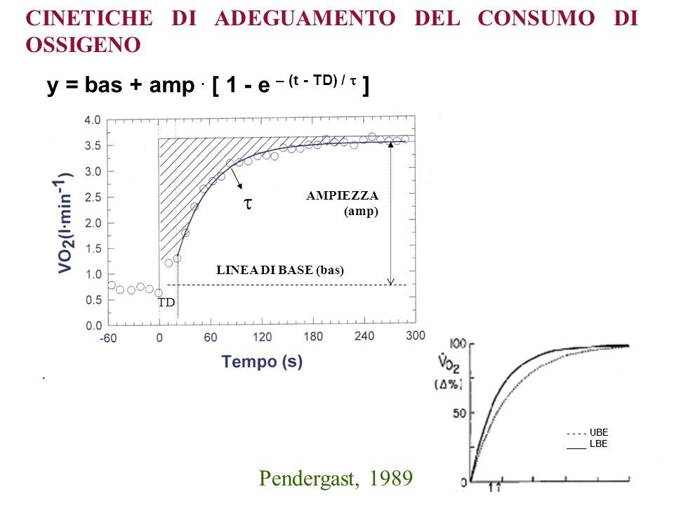 CINETICHE DI ADEGUAMENTO DEL CONSUMO DI OSSIGENO y = bas + amp. [ 1 - e – (t - TD) / ]. LINEA DI BASE (bas) AMPIEZZA (amp) TD - - - - UBE ____ LBE Pen