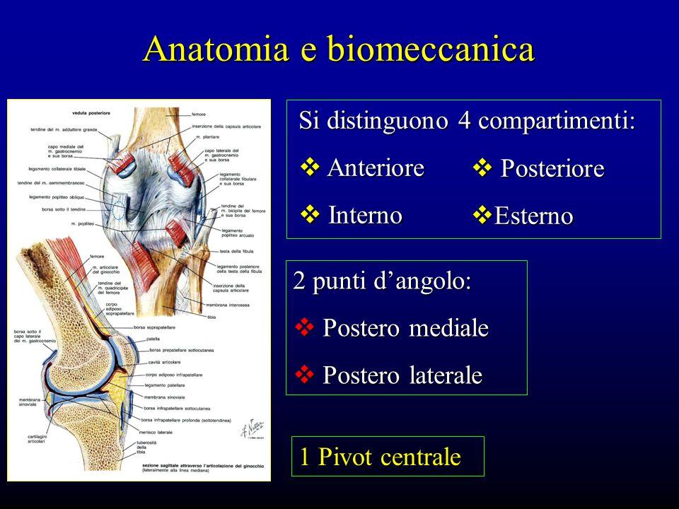 Anatomia e biomeccanica 2 punti dangolo: Postero mediale Postero mediale Postero laterale Postero laterale 1 Pivot centrale Si distinguono 4 compartim