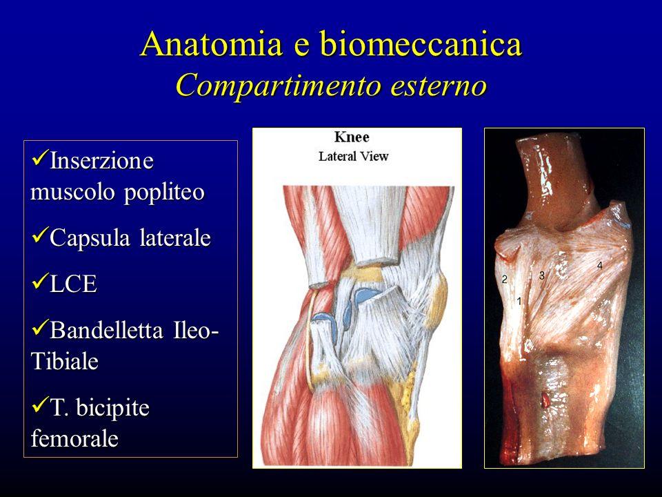 Anatomia e biomeccanica Compartimento esterno Inserzione muscolo popliteo Inserzione muscolo popliteo Capsula laterale Capsula laterale LCE LCE Bandel
