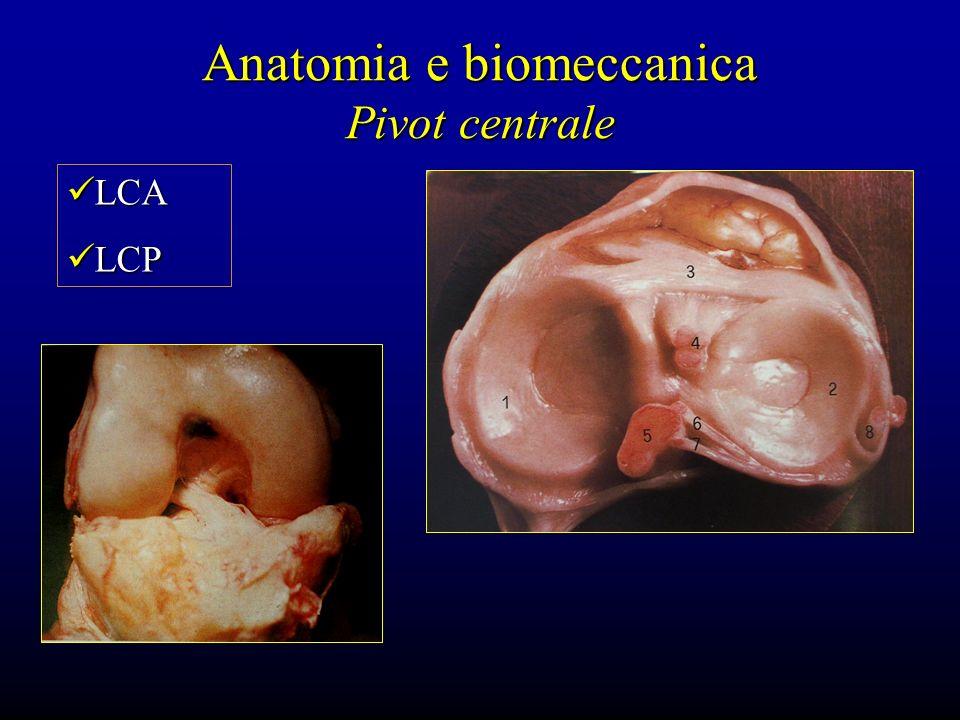 Anatomia e biomeccanica Pivot centrale LCA LCA LCP LCP