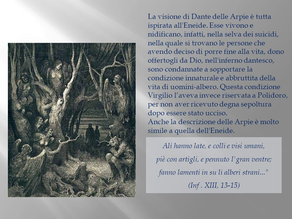 La visione di Dante delle Arpie è tutta ispirata all'Eneide. Esse vivono e nidificano, infatti, nella selva dei suicidi, nella quale si trovano le per