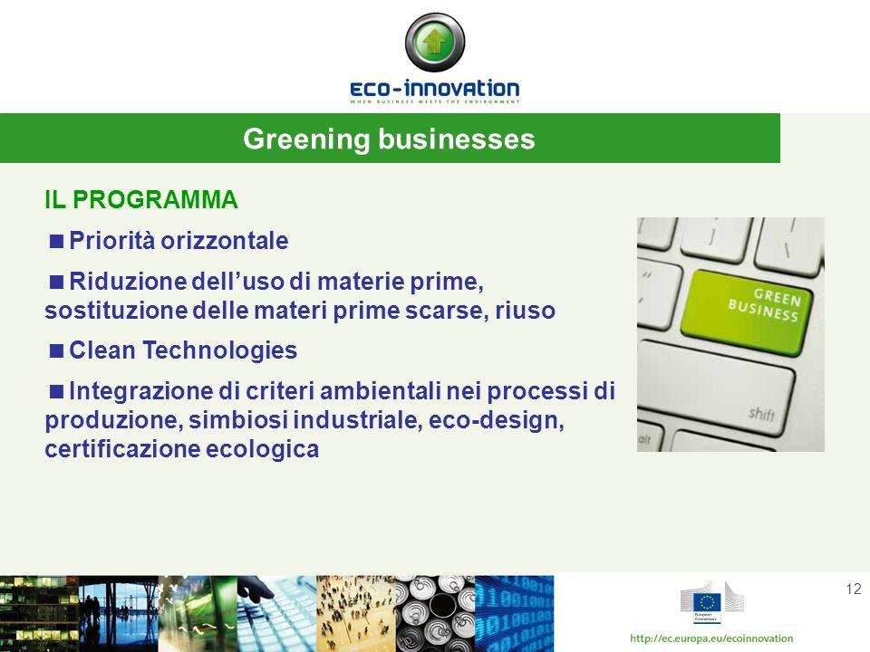 12 Greening businesses IL PROGRAMMA Priorità orizzontale Riduzione delluso di materie prime, sostituzione delle materi prime scarse, riuso Clean Technologies Integrazione di criteri ambientali nei processi di produzione, simbiosi industriale, eco-design, certificazione ecologica