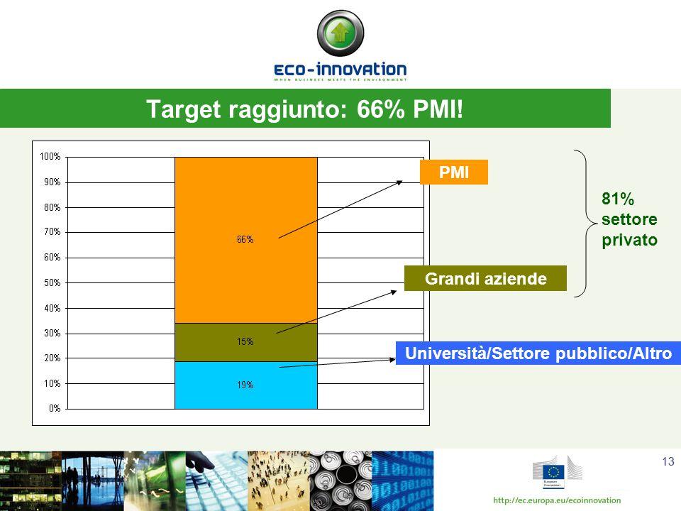 13 Target raggiunto: 66% PMI.