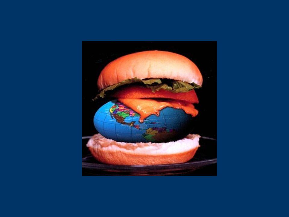 Incenerire significa cercare di migliorare una cattiva soluzione Nel XXI secolo, il nostro compito NON è trovare nuovi metodi per distruggere i rifiuti …ma piuttosto evitare di produrre imballaggi e prodotti destinati ad essere distrutti!