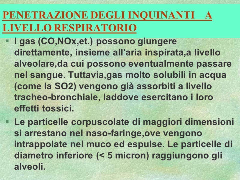 PENETRAZIONE DEGLI INQUINANTI A LIVELLO RESPIRATORIO §I gas (CO,NOx,et.) possono giungere direttamente, insieme allaria inspirata,a livello alveolare,