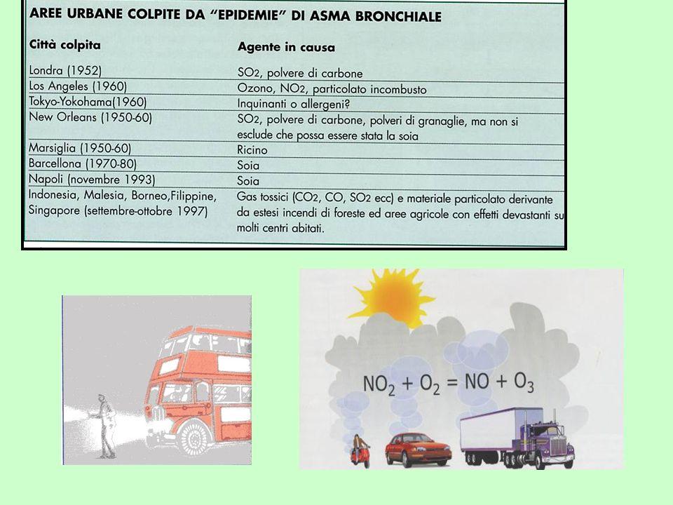 Azione dei gas di scarico del diesel Attivazione della via Th2 dallassociazione del DEP con allergeni