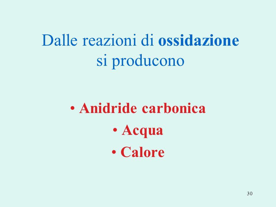 30 Dalle reazioni di ossidazione si producono Anidride carbonica Acqua Calore