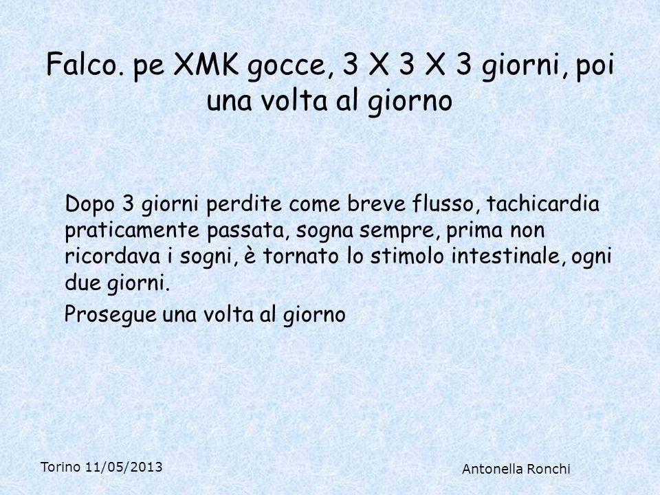 Torino 11/05/2013 Antonella Ronchi Falco.