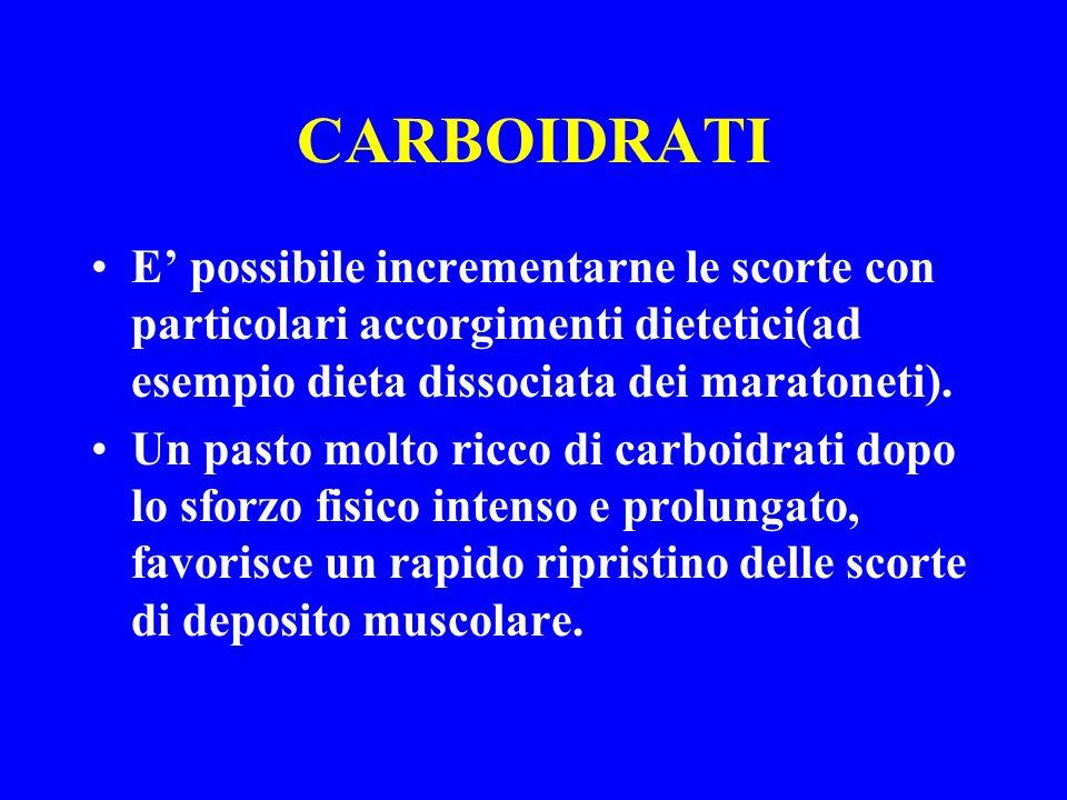 CARBOIDRATI E possibile incrementarne le scorte con particolari accorgimenti dietetici(ad esempio dieta dissociata dei maratoneti). Un pasto molto ric